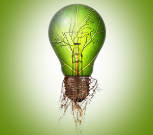 5 Alternativas a las Compañías Eléctricas – Cursos Online Energías Renovables